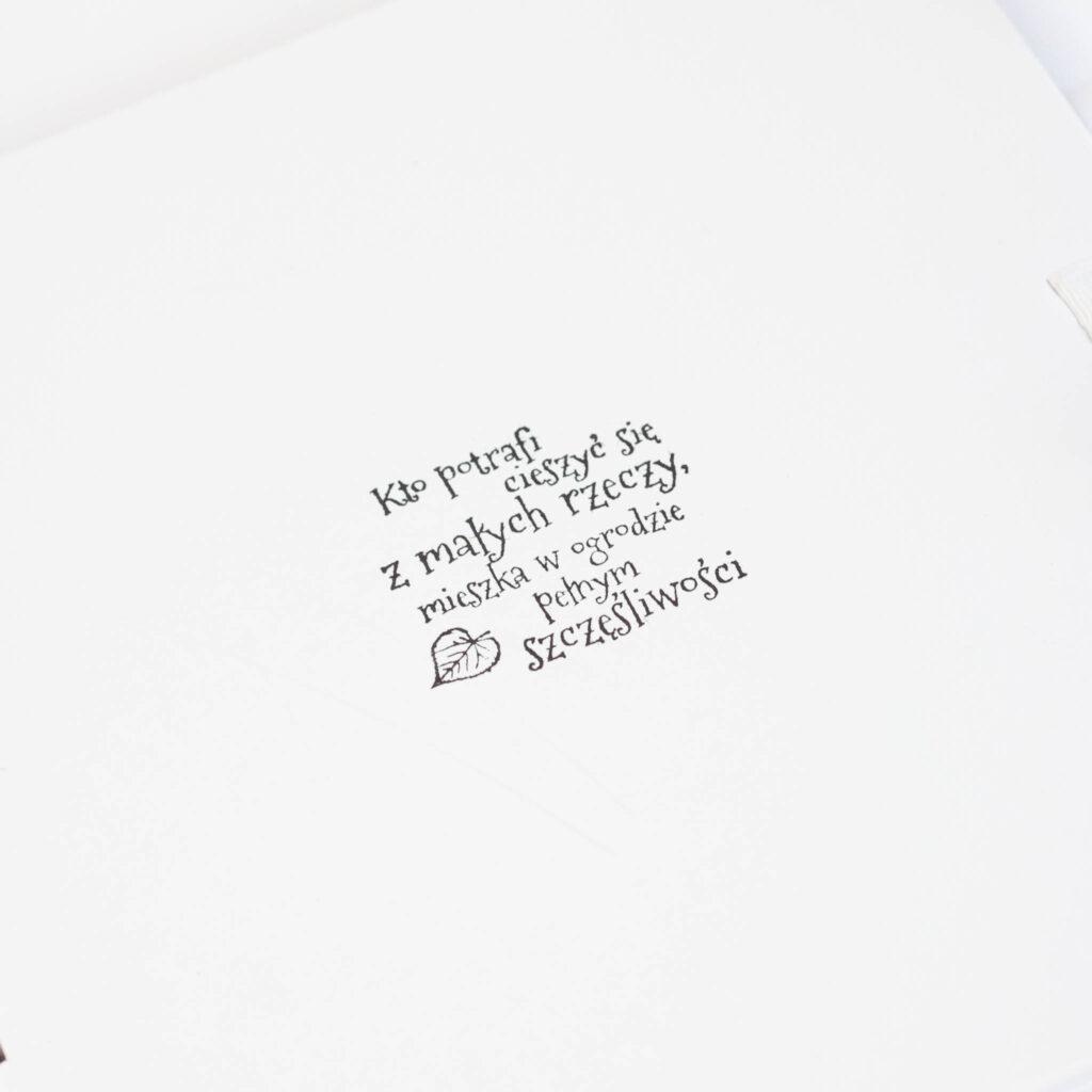 okładka albumu małe rzeczy